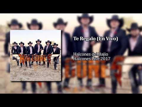 Halcones del Bajio - Te Regaló (En Vivo)