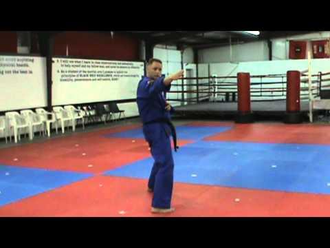 "Kiba Dachi moves - done by Kevin ""Hurricane"" Hudson"