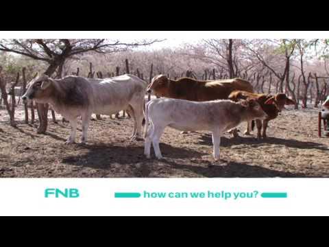 Botswana Stock Exchange& Personal Financial Management