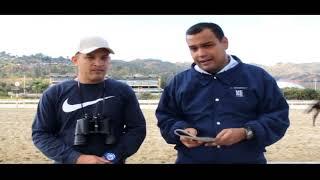 DETECTIVE HÍPICO Jonathan Perozo Hípicos Enlinea SÁBADO 02/03 DOMINGO 03/03