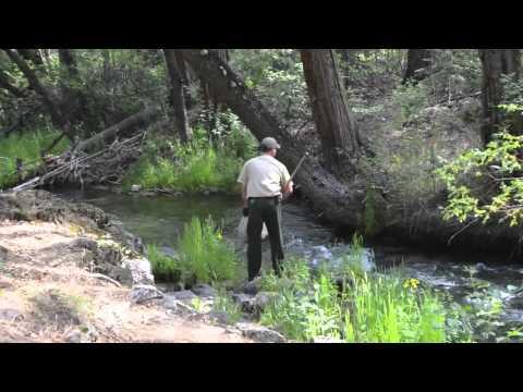Crystal Lake Hatchery Planting Fish