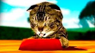 Играем в СИМУЛЯТОР КОШКИ #2 приключение мульт игры для детей про котят #ПУРУМЧАТА