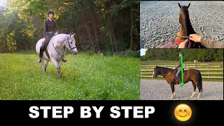 HOW TO RIDE A HORSE FOR BEGINNERS (STEP BY STEP)