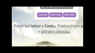 České Slow Radio vysílá online zpěv ptáků z lesa. Nyní je dostupné také v angličtině