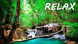 Relaxing Music and Soothing Water Sounds 3 🔴 Sleep 24/7 BGM Relaxation