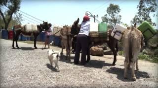 Enrique Lomnitz, helping Mexico City's water shortage-