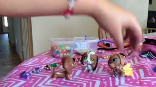 Just one!!!! (Funny LPS skit)