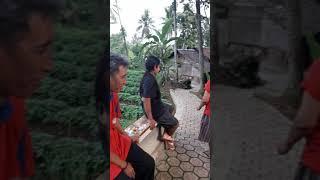 Janda Liar Mencari Mangsa