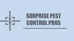 Surprise Pest Control Pros-Termite Exterminator Service in Surprise AZ