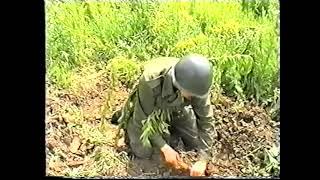 Przysięga Wojskowa - Brzeg 30.06.2001 godz. 9:00