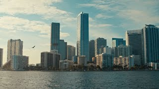 Connect with the multicultural team and immerse in Miami's boldest neighborhood | Four Seasons Miami