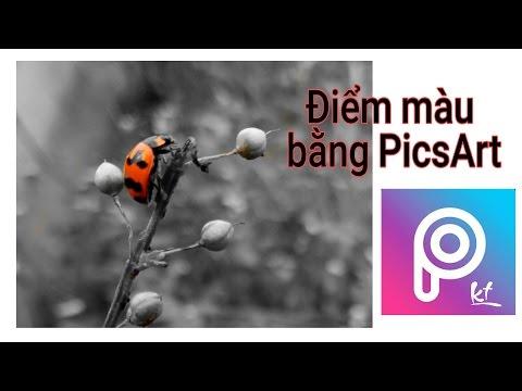 điểm Màu Hình ảnh Bằng Picsart How To Point Color With
