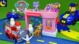 Paw Patrol Toys! Marshall's Pet Rescue Playset Katie Callie Cat Pet Parlor Track Apollo Racers Toys