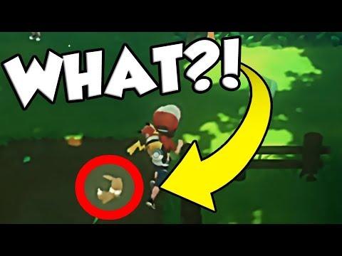 CATCH EEVEE IN VIRIDIAN FOREST?!? Pokemon Let's Go News Update!