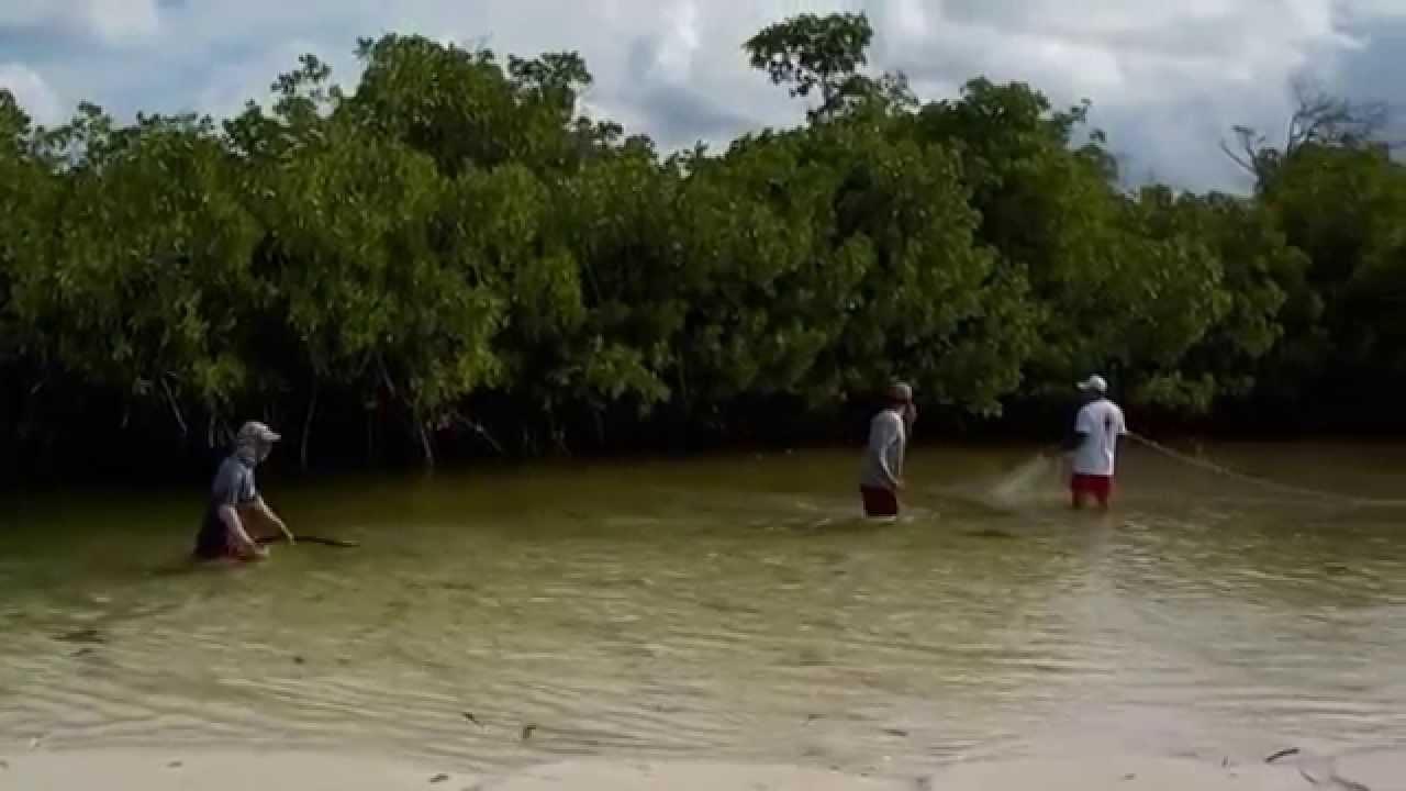 Mangrove fishing in cuba 2014 local fisherman youtube for Fishing in cuba