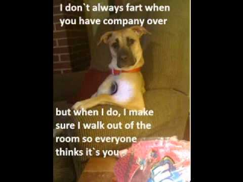 Funny Animal Jokes For Kids | www.pixshark.com - Images ...