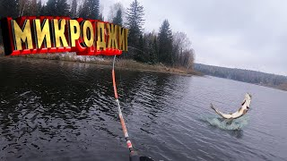 Рыбалка на микроджиг щука и окунь на спиннинг поздней осенью как поймать в безклевье