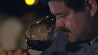 An Immigrant Winemaker's Rise to the Top