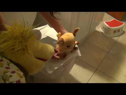 NI Short-Raichu's Pooping Problem