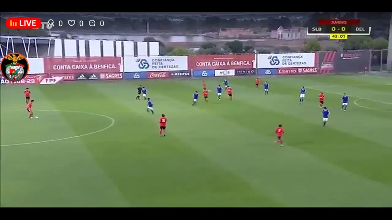 Benfica Tv Em Direto Youtube