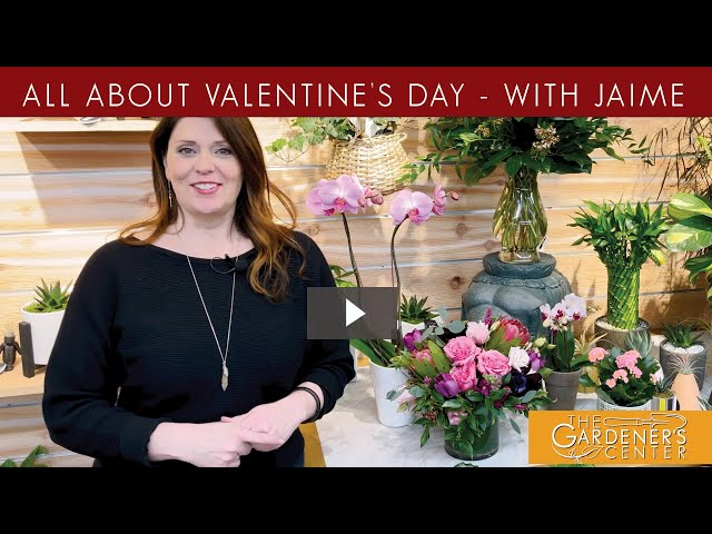 2/6/2021   Valentines Day with Jaime