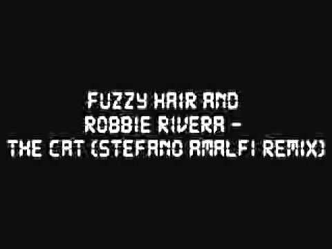 Fuzzy Hair & Robbie Rivera - Cat (Stefano Amalfi remix)