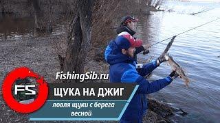 Весенняя береговая ловля щуки на джиг | FishingSib.ru