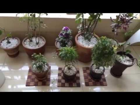 Bangladesh Travel Veranda Deshi Style Decoration Youtube Home Decorating Ideas