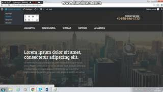 WordPress ile tema ve menu ekleme