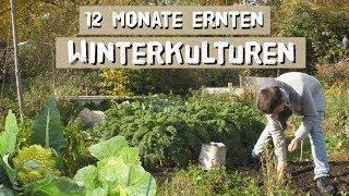 12 Monate ernten - Winterkulturen