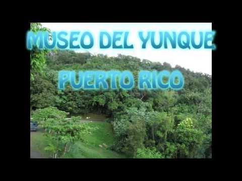 Museum El Yunque, Puerto Rico
