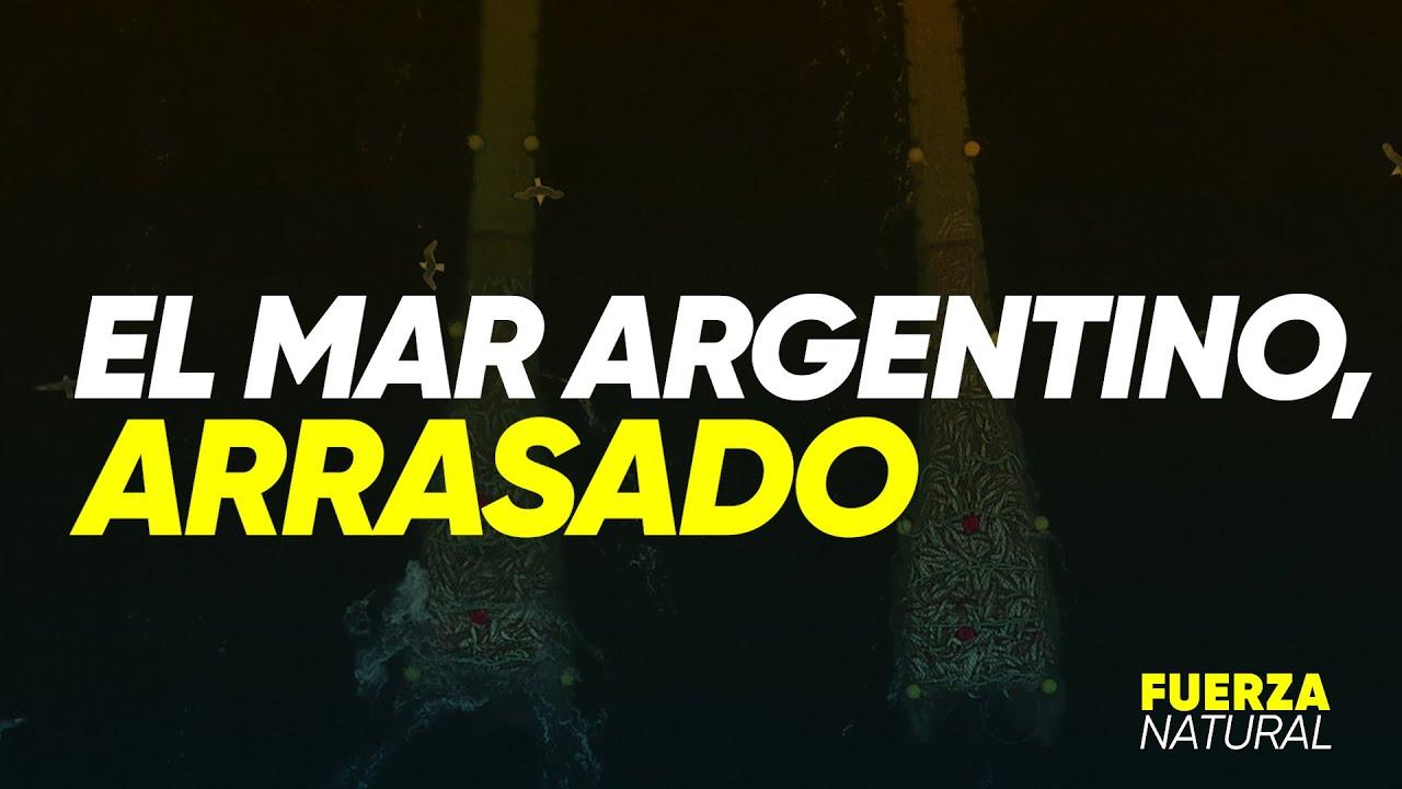 EL MAR ARGENTINO, ARRASADO - #FuerzaNatural
