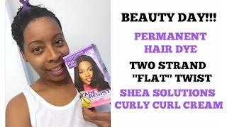 Dark & Lovely (JET BLACK) Permanent Color Hair Dye & Two Strand FLAT Twist..
