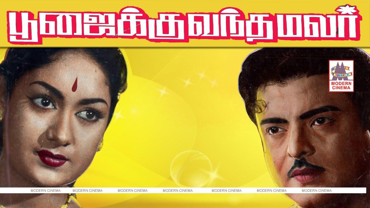 Poojaikku Vandamalar Tamil Full Movie Gemini Ganesan: Poojaiku Vantha Malar Full Movie Gemini Ganesan Muthuraman