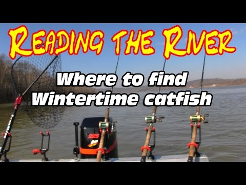 Bank fishing for catfish - How to catch catfish in a river - Winter catfishing from YouTube · High Definition · Duration:  12 minutes 31 seconds  · 160,000+ views · uploaded on 12/29/2016 · uploaded by Catfish and Carp