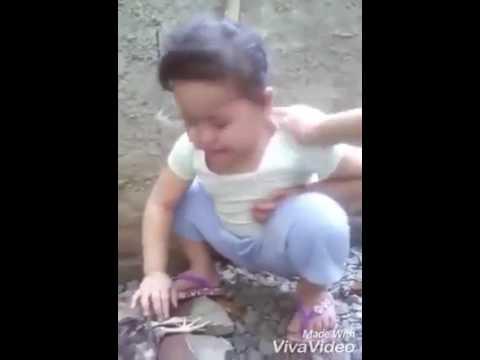 Maza kombda koni marila funny video