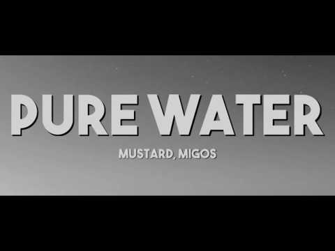 mustard---pure-water-ft.-migos-(lyrics)