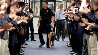 SWAT K9 Officer Gets Hero