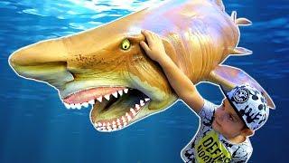 Learn Wild Animals in Blue Water | Family Fun Travel to Aquarium