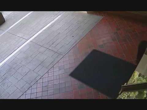 Surveillance footage of Marrisa Shen