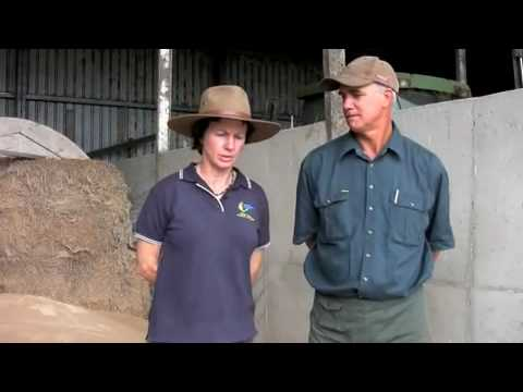 Organic dairy farming practices saves family farm