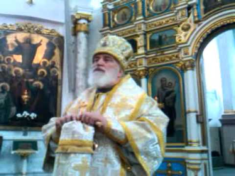 24 01 2016 Слово митрополита Павла о покаянии и Благодати Божией