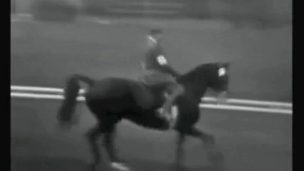 JO de Tokyo 1964 : la reprise du couple Champion Olympique