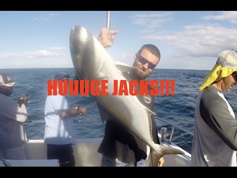 He caught so many jacks deep sea fishing florida for Majesty deep sea fishing