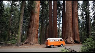 VW Camper Bus- restoration and roadtrip - Von Voyage