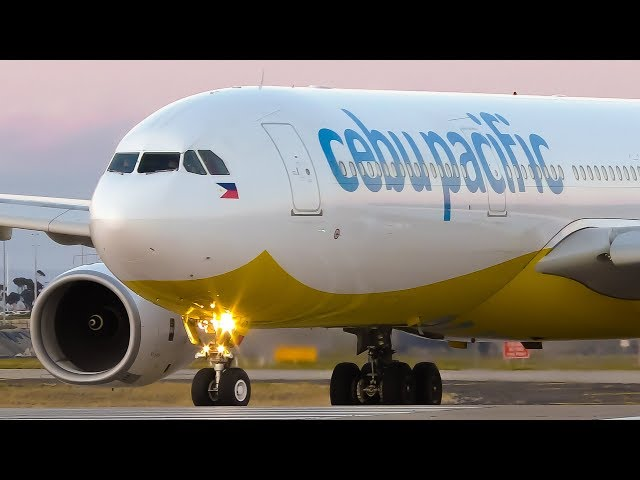 INCREDIBLE Cebu Pacific Airbus A330-300 DUSK Takeoff | Melbourne Airport Plane Spotting