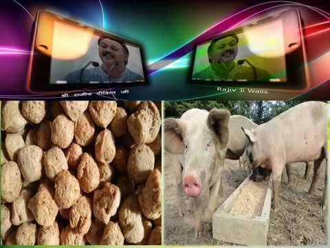 Before Eating Soya Products (Beans,Oil,Milk.etc ) Watch It By Rajiv Dixit