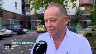 Már nem alelnök Szanyi Tibor 19-07-17