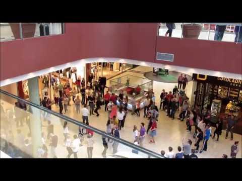 Rueda de Casino Flashmob Slovenia Celje CityCenter 2017