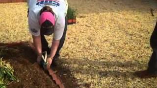 Brick Edging A Flower Bed! Rebuilding Together Greater Dallas